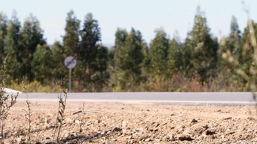 Accidente de coche en Huelva, carretera
