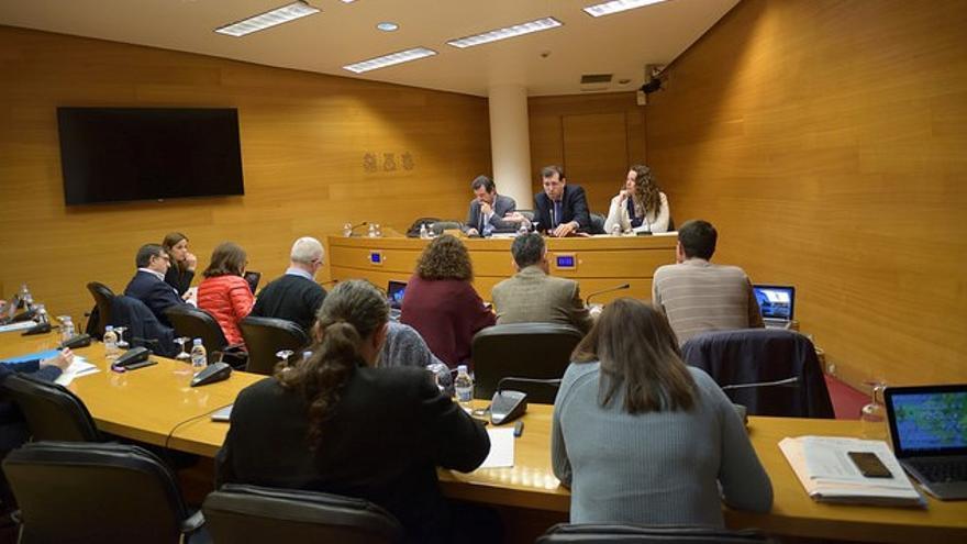 Un momento de la comisión de Medio Ambiente en las Corts Valencianes