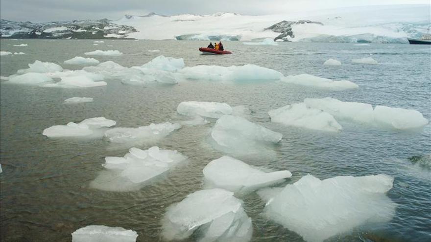 La acidificación de los océanos se acelera a un ritmo sin precedentes, según la UNESCO