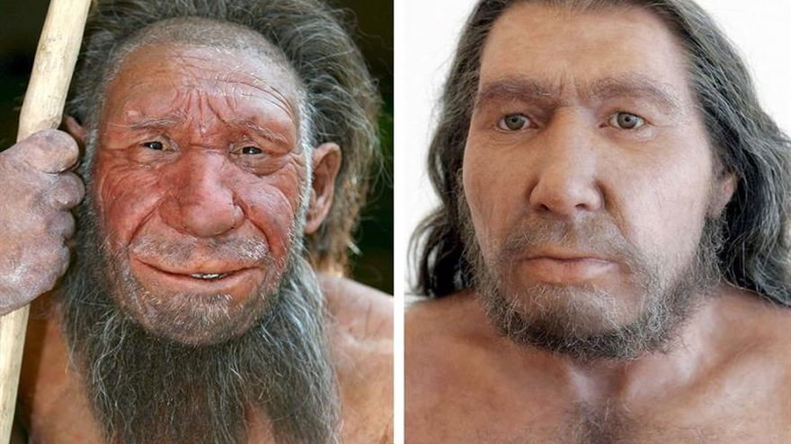 "Arsuaga: ""La cara humana pudo evolucionar debido a la expresión social"""