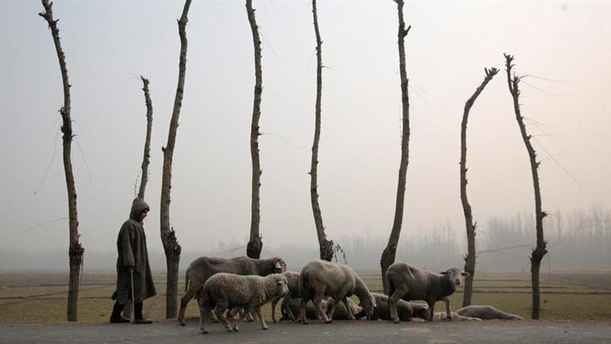 El invierno relaja 5 meses de protestas en Cachemira tras millones de dólares en pérdidas