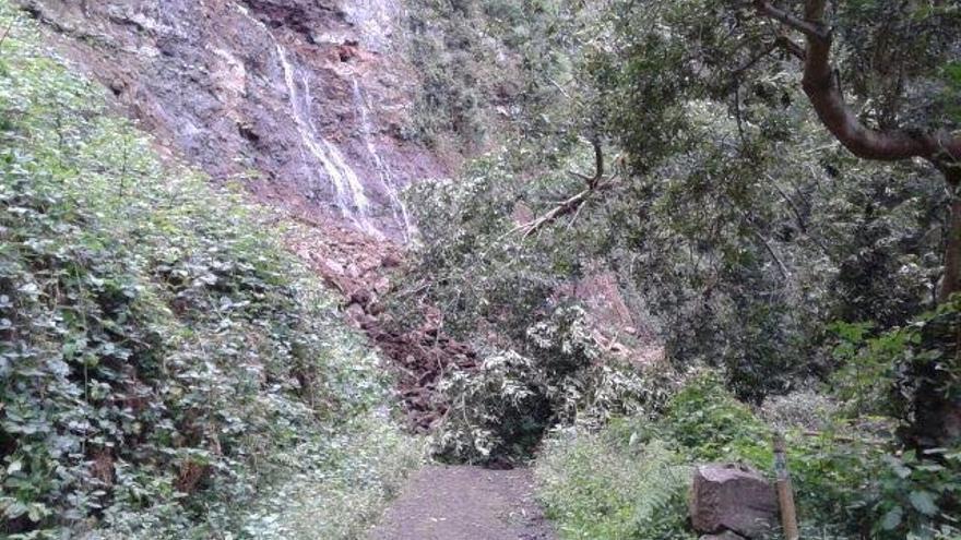El derrumbe se localiza en el tramo del canal que discurre por el Barranco del Cubo, en el municipio de Puntallana.
