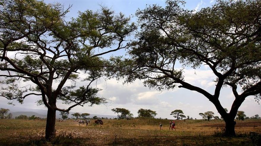 4 turistas españoles e italianos mueren en un accidente de coche en Tanzania