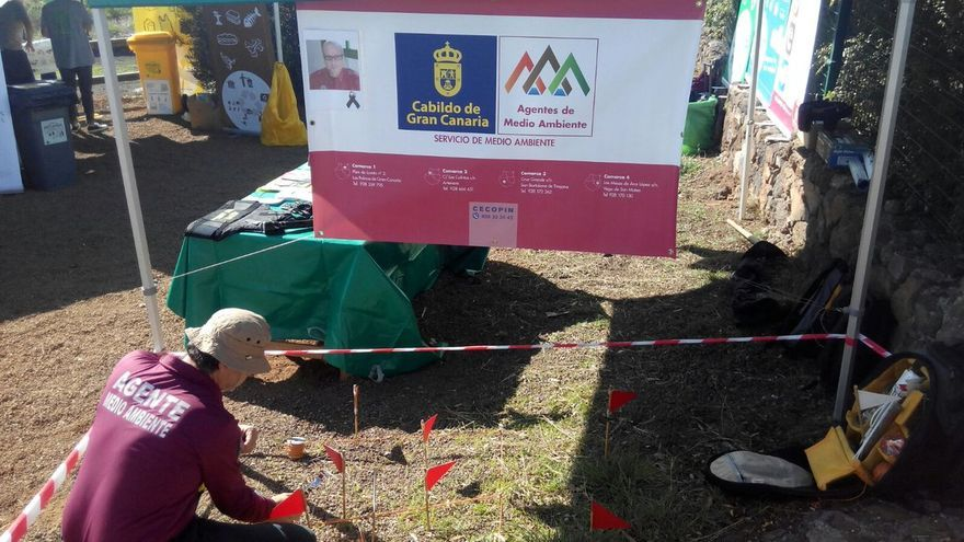 Agente del medio ambiente del Cabildo de Gran Canaria en el área recreativa de El Ratiño, en el municipio de Ingenio (Gran Canaria), durante la celebración de la 47ª edición del Día del Árbol