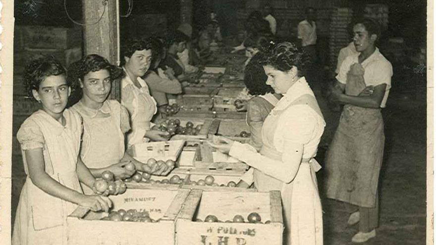 Mujeres trabajando en el empaquetado de tomates.