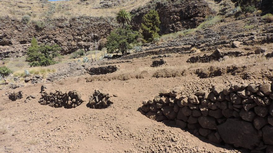 En la imagen, los destrozos ocasionados por las cabras en El Hoyo-Peña del Diablo.