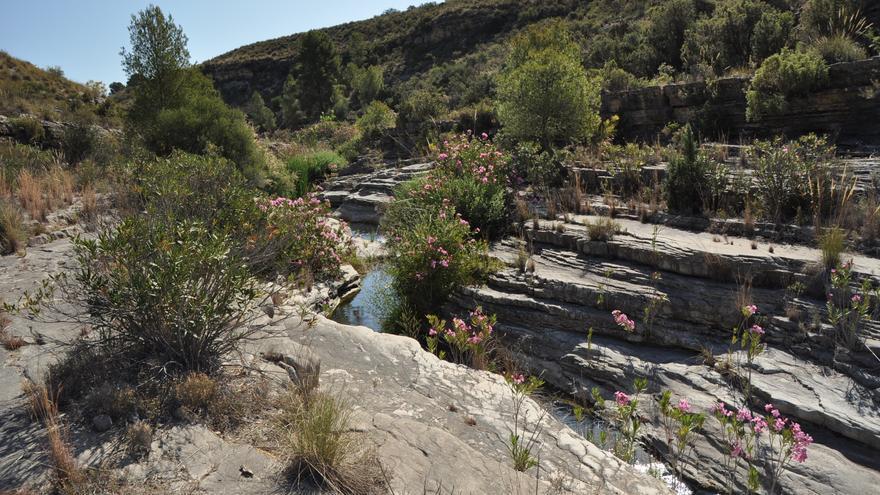 Explorando el río Moratalla 1