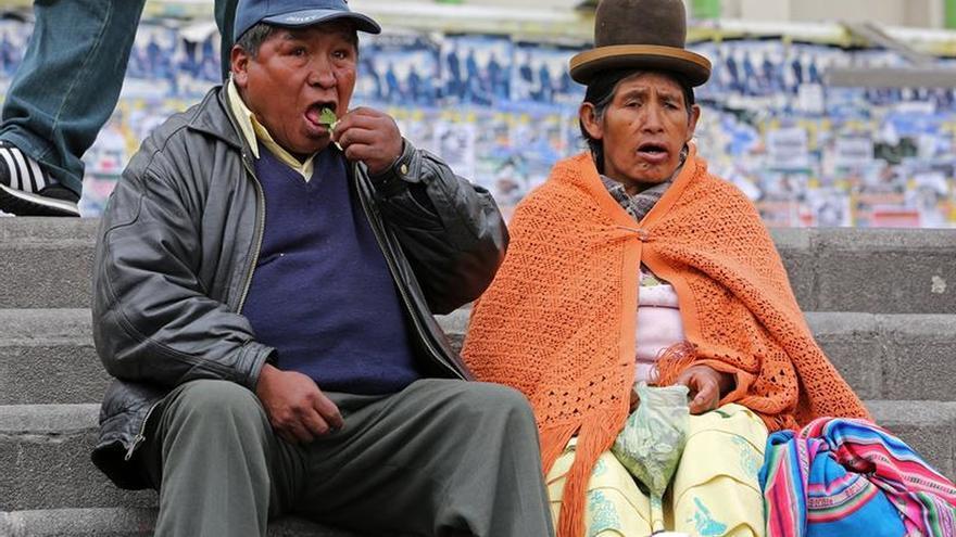 Bolivia celebra el día de la masticación de hojas de coca