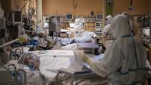 Italia reduce la cifra de muertes diarias con coronavirus hasta 542, pero suma más nuevos casos
