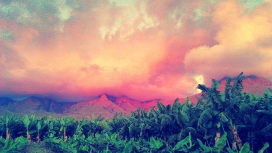 Finca de platanera en Tenerife