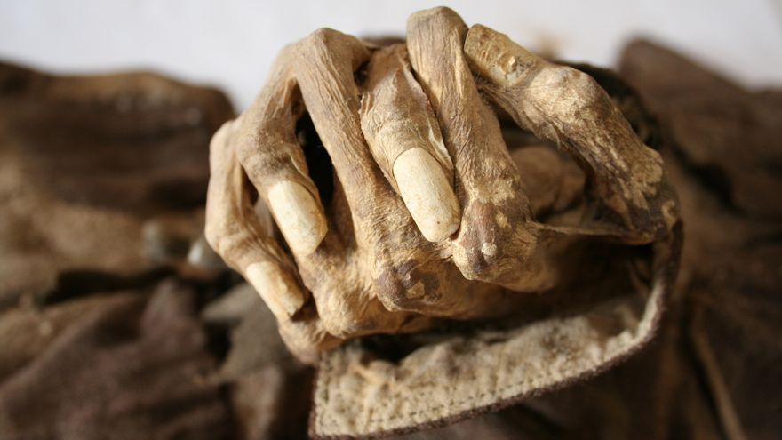 Resultado de imagen de museo de las momias quinto de ebro