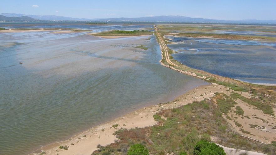 Punta de Banya en el delta /Cristina Sánchez-Seo.