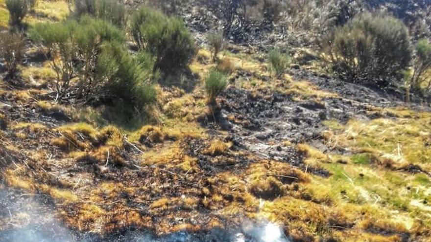 Turbera del Hornillo, Garganta de los Infiernos, Valle del Jerte, Extremadura