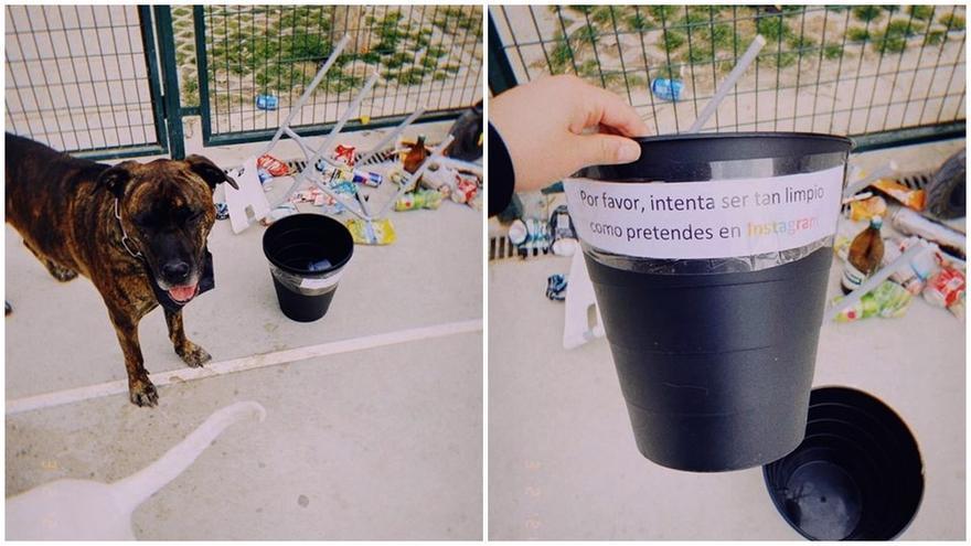 La joven que animó a sus vecinos a limpiar el parque más sucio de Malasaña