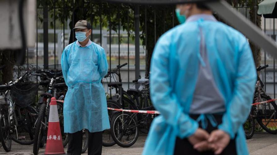 Un medio norcoreano reconoce la existencia de brote de peste porcina africana