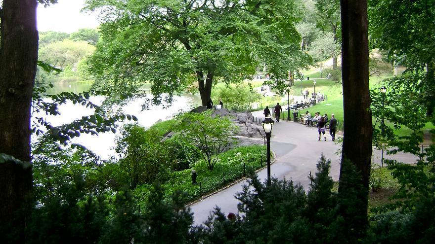 Paseantes en Central park, pulmón verde de Nueva York. GRACIELA BERRINO