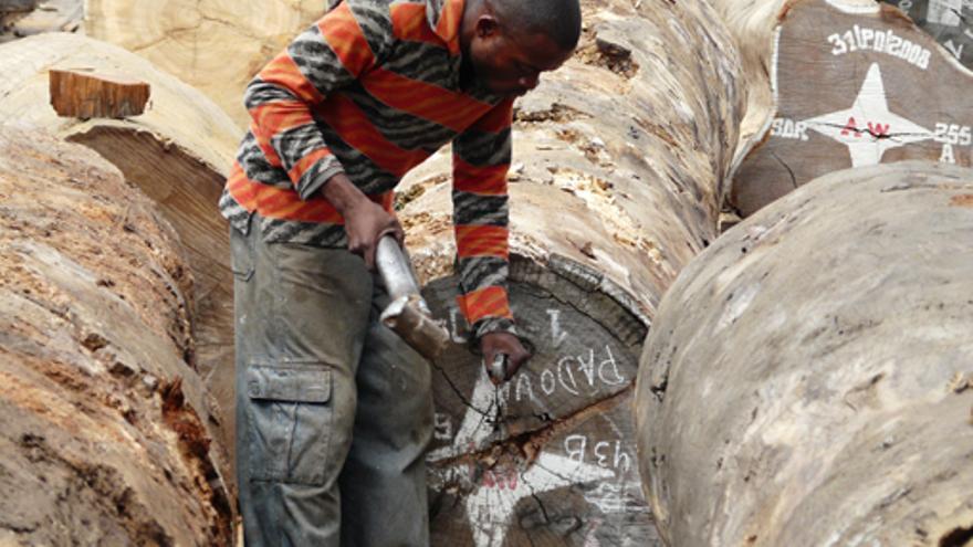 El reglamento europeo contra la madera ilegal entró en vigor en 2013.