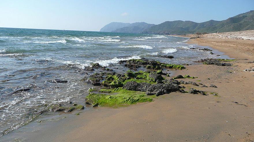 """Calblanque, playa prácticamente virgen protegida del """"boom"""" turístico"""