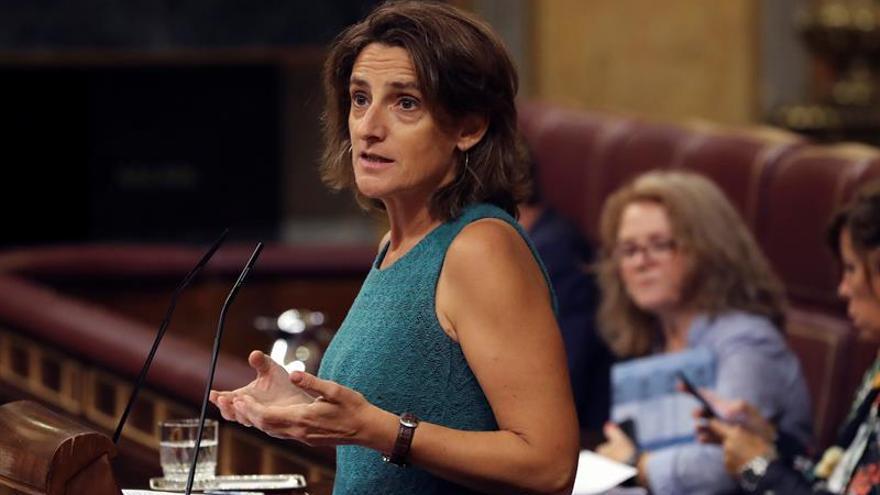 Teresa Ribera, en el Congreso