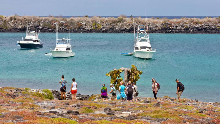 Un grupo de viajeros pasea por la Isla Plazas Sur, en el Archipiélago de Galápagos. VIAJAR AHORA