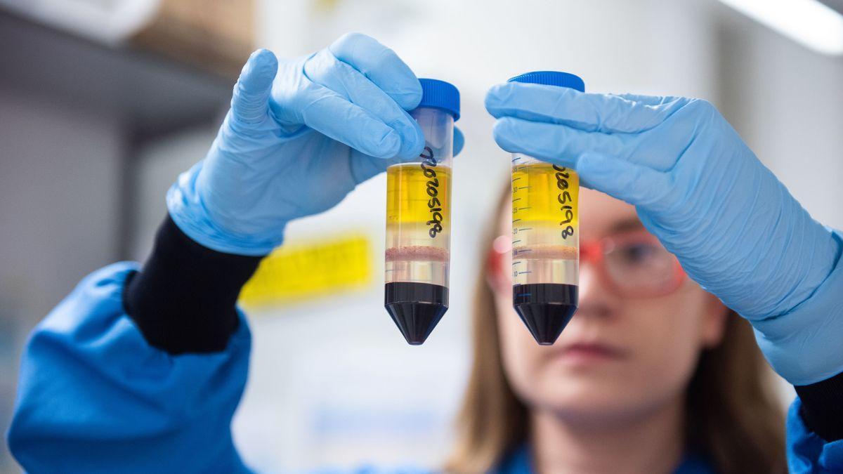 Una investigadora trabaja en el desarrollo de la vacuna de Oxford y AstraZeneca.