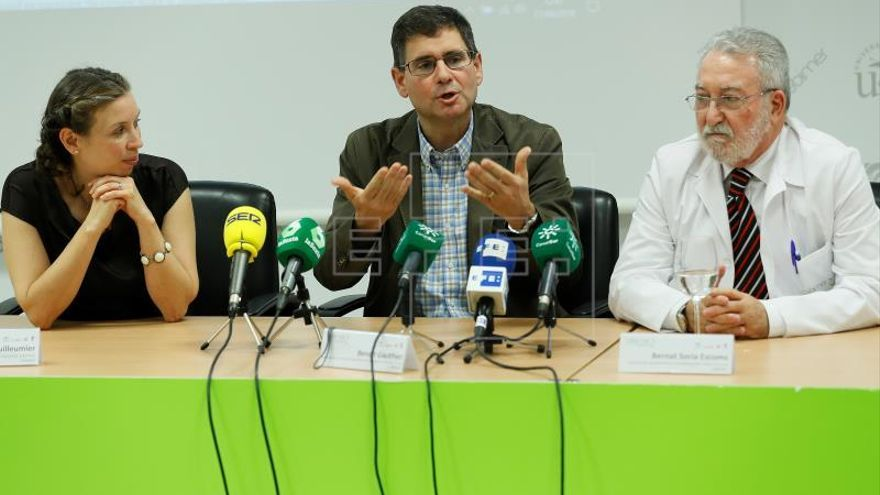 La investigación de un fármaco para frenar la diabetes tipo 1 requiere 17 millones euros