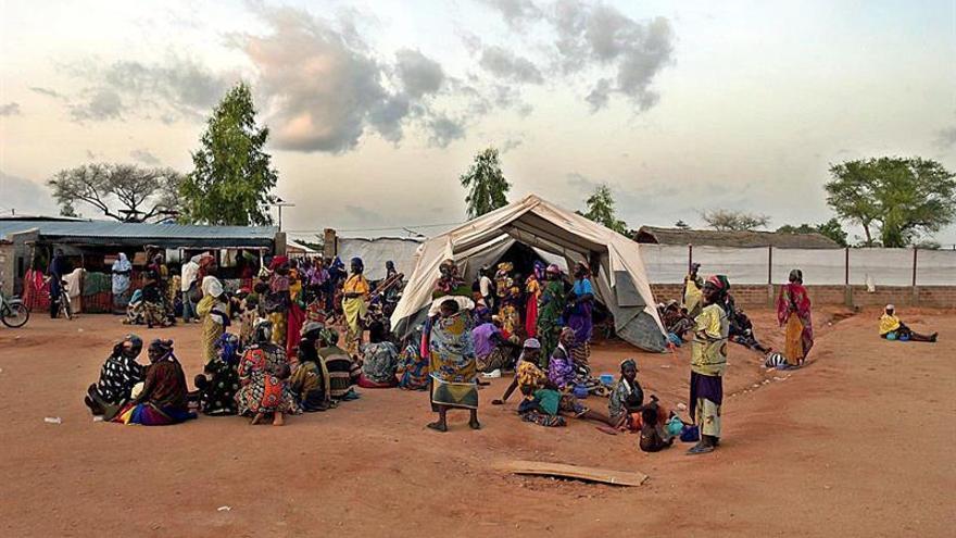 El elevado riesgo de hambruna en Nigeria requiere una acción urgente, dice la FAO