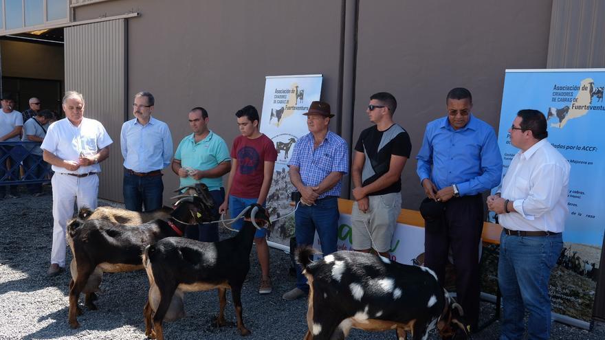 Imagen con los tres mejores ejemplares de cabras, en la entrega de premios de este certamen de Feaga