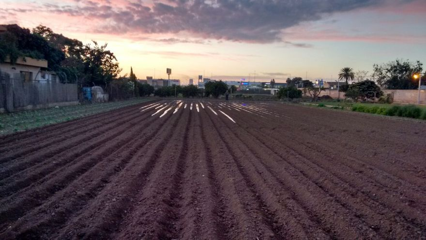 La huerta de Castellar-Oliveral