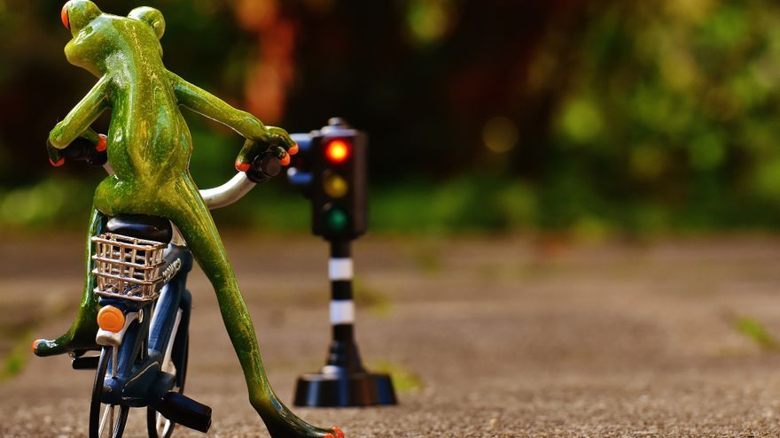 'Frog'