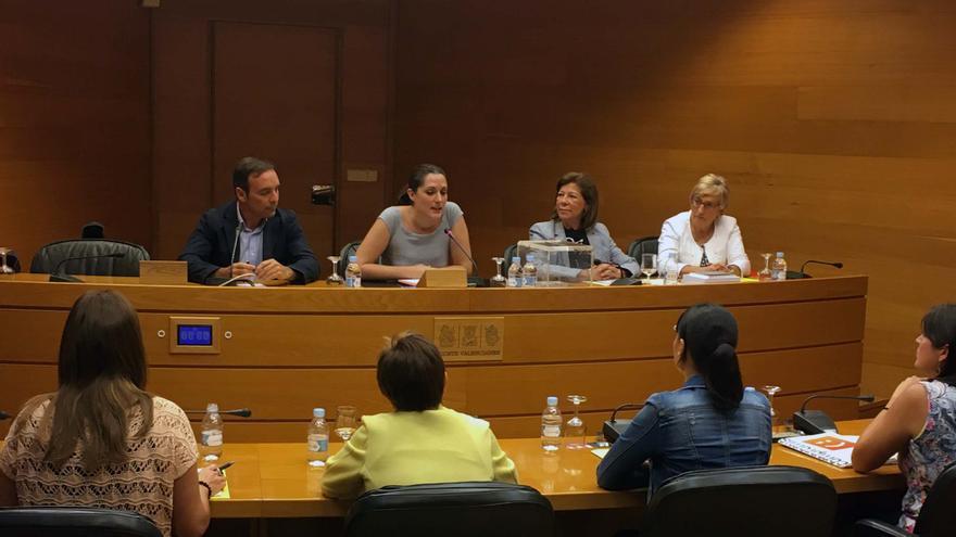 La comisión de investigación de Ciegsa, constituida este martes en las Corts