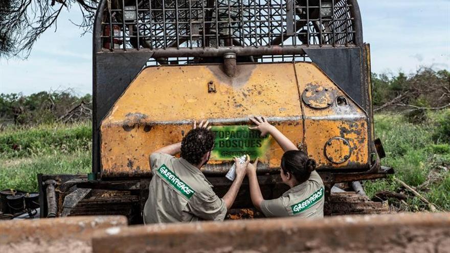Fotografía cedida este miércoles por Greenpeace en la que se registró a un par de activistas al pintar un grafiti en la parte delantera de una excavadora, en El Impenetrable, un bosque nativo deforestado en el noroeste de la provincia norteña del Chaco (Argentina).