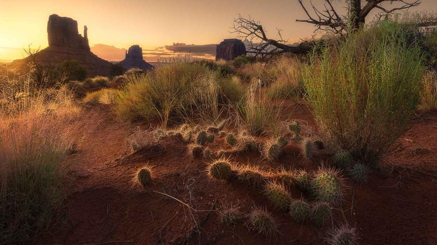 Monument Valley, uno de los lugares más espectaculares del oeste norteamericano. Dan Zafra