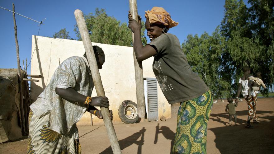 Imagen de archivo de  un protecto de la ONU de apoyo a las cooperativas de granjeros y agricultores locales de Timbuktu, Mali, en 2013. / Marco Dormino. (UN Photo).