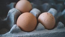 Alergia al huevo y la leche, dos de las más comunes