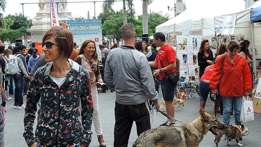 El Ayuntamiento de Santa Cruz de Tenerife celebra este sábado por la mañana el Día de los Animales