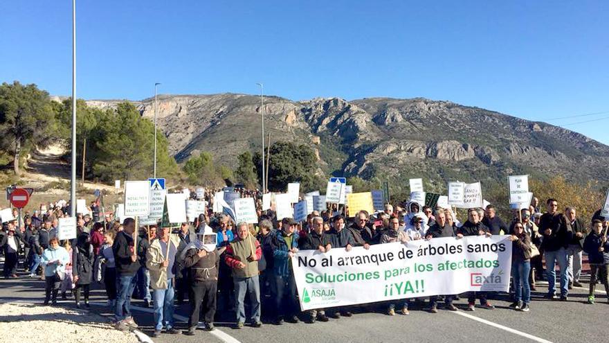 Algunos de los participantes en la manifestación de agricultores celebrada este sábado en Guadalest