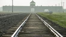Imagen de las vías de tren que llegan directamente hasta el campo de concentración de Auschwitz.