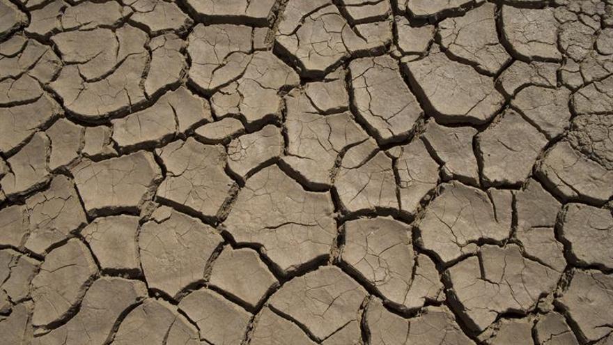 """Peter Glas: La UE debe mejorar la gestión de agua en África """"por su propio interés"""""""