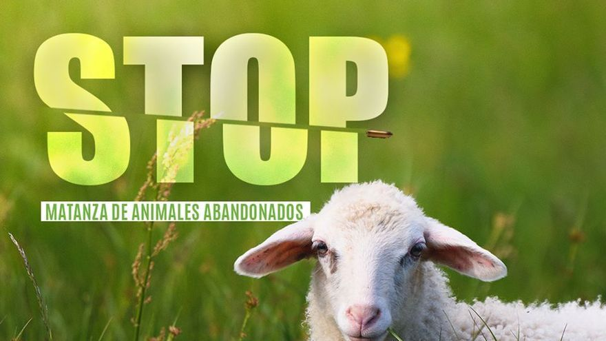 """Pacma convoca una concentración en Las Palmas de Gran Canaria contra la """"matanza"""" de animales abandonados."""