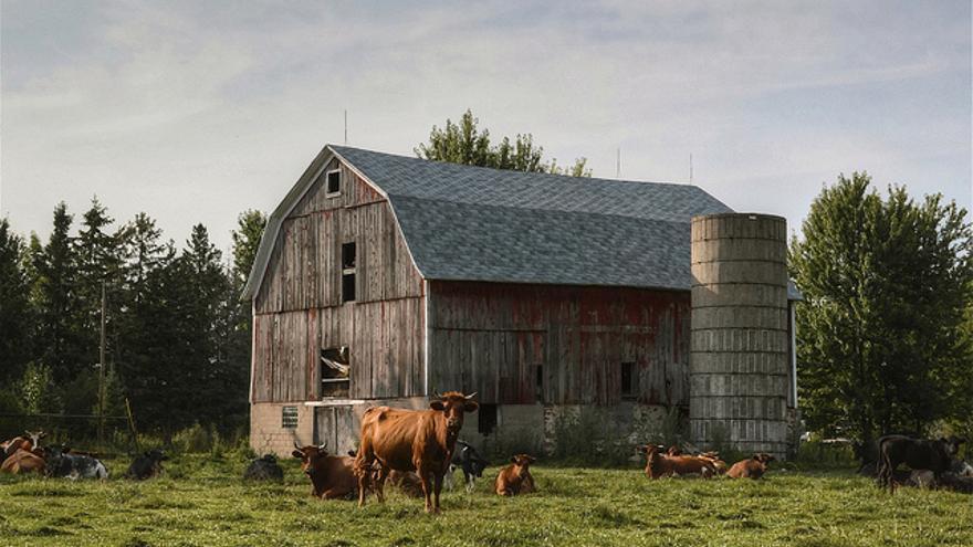 Imagen de una granja de Wisconsin, Estados Unidos.