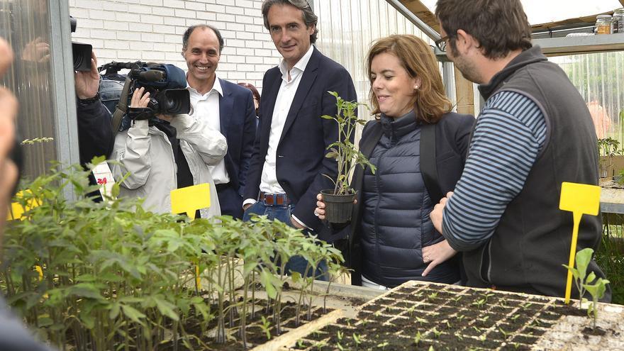 Soraya Sáez de Santamaría ha visitado Cantabria para reforzar la campaña electoral del PP.