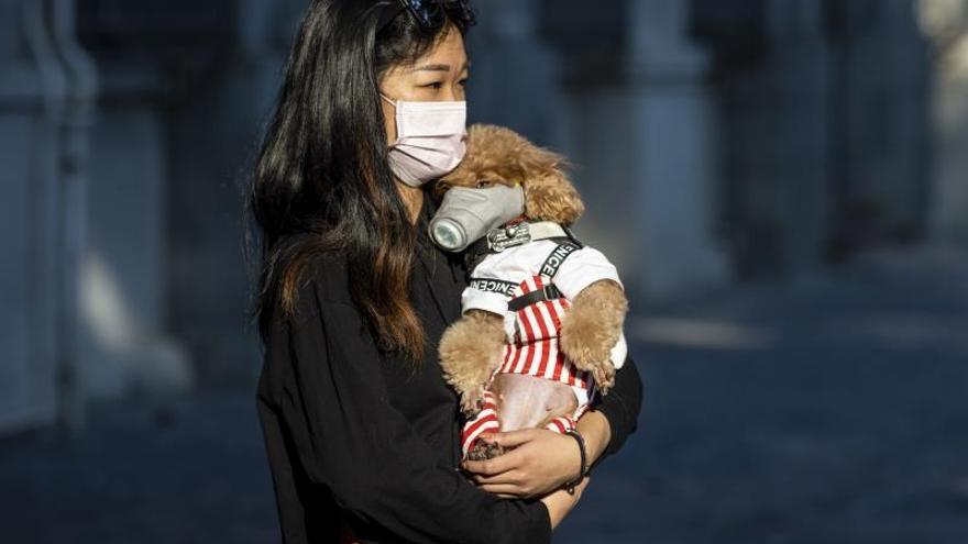 Mosquitos, cocaína y cloro: Bulos sobre el coronavirus desmentidos por la OMS
