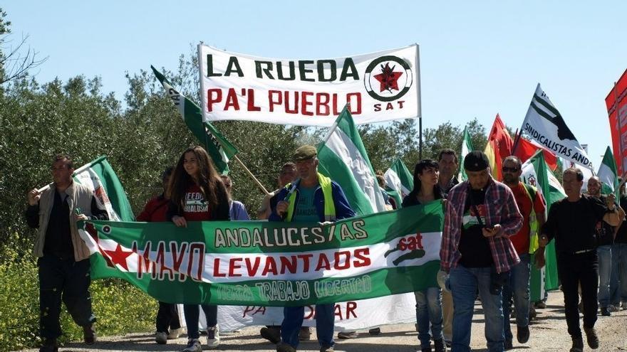 """Jornaleros del SAT vuelven a ocupar una finca durante varias horas para recuperar unas """"tierras abandonadas"""""""