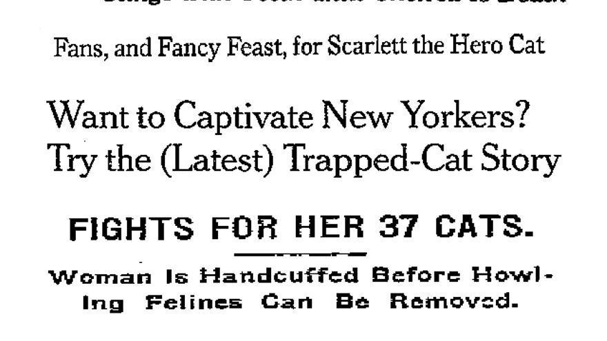 Algunos de los titulares de 'The New York Times' que Ehlrich ha encontrado durante su investigación