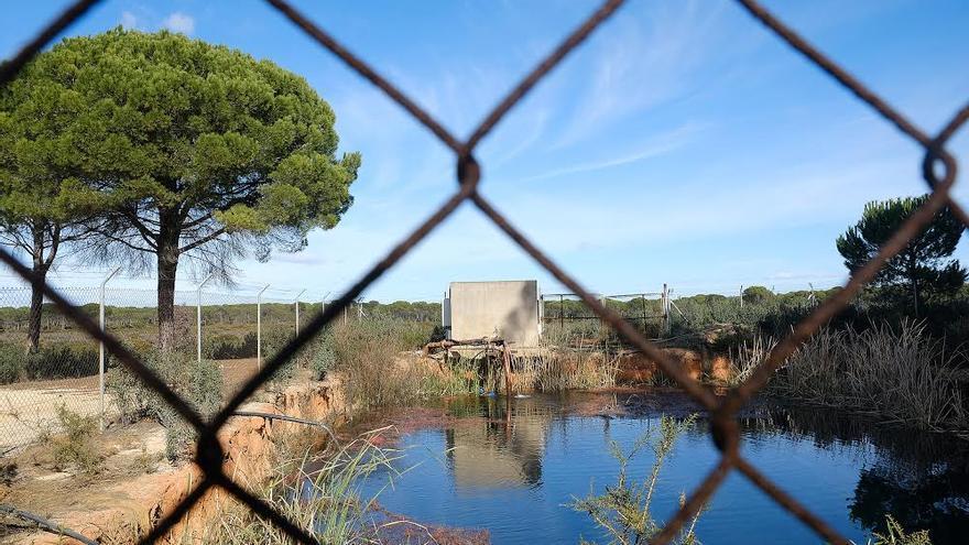 Balsa ilegal en monte público alimentada con pozos ilegales. Marcada por la guardería fluvial/Seprona. Municipio de Lucena del Puerto (Huelva)