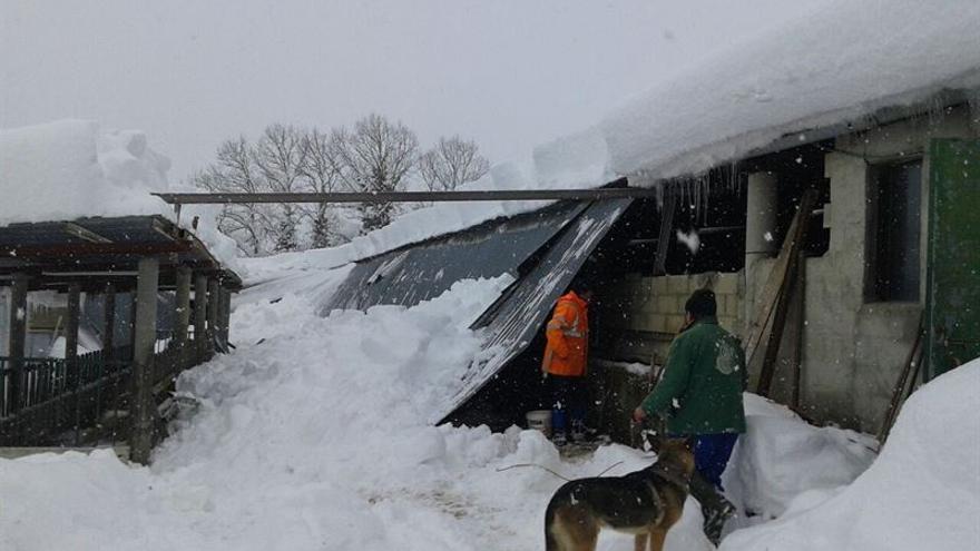 Algunos tejados se han desplomado debido al peso de la nieve acumulada durante estos días