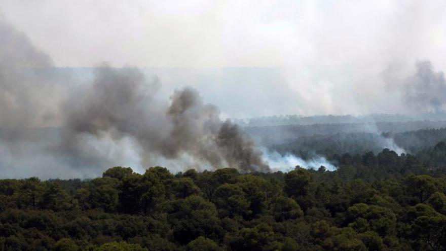 """El incendio de Barchín del Hoyo (Cuenca), """"próximo a estabilizarse"""""""