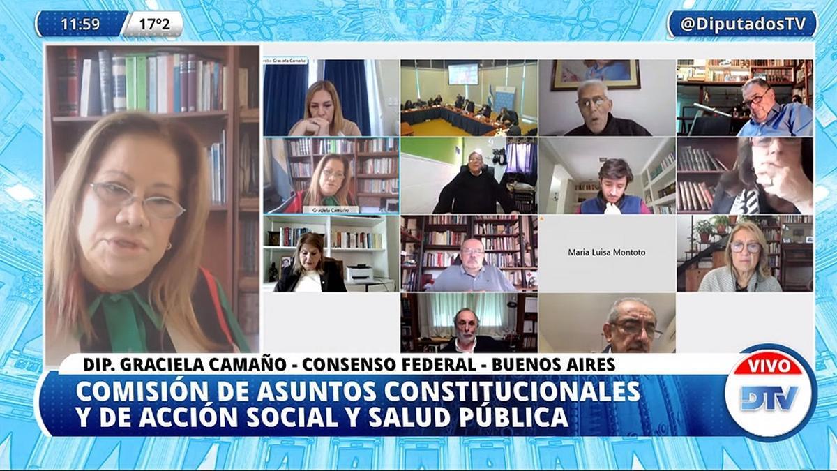 La diputada del bloque de Consenso Federal, Graciela Camaño, anticipó el voto negativo de su espacio.