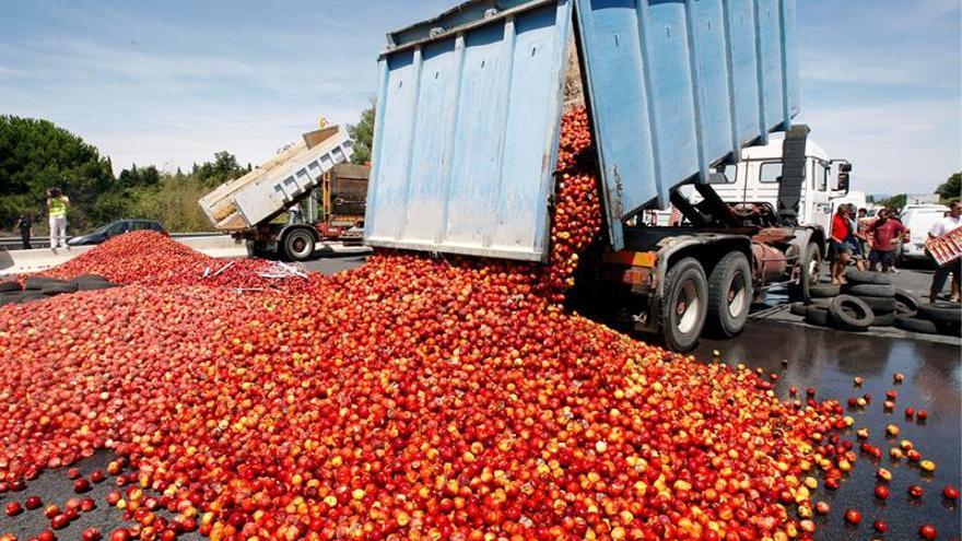Protesta de agricultores en Perpiñán por la competencia de la fruta española